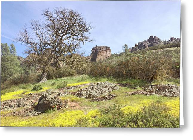 Greeting Card featuring the photograph Spring In Pinnacles National Park by Art Block Collections