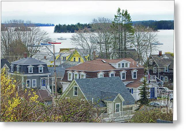 Spring In Maine, Stonington Greeting Card
