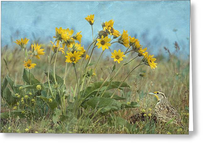 Spring In The Meadows Greeting Card by Angie Vogel