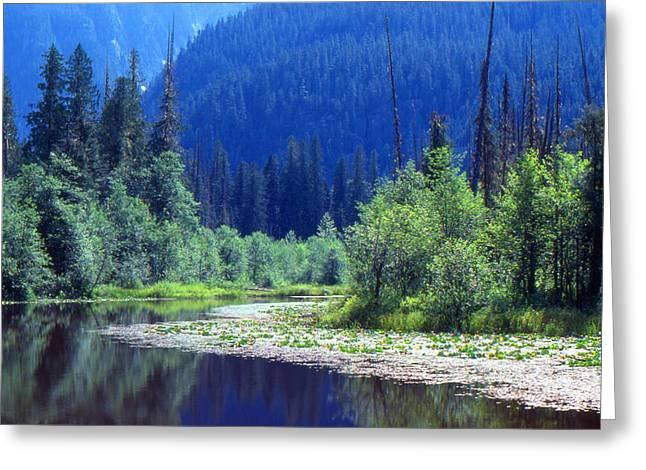Spring In The Mountains 3  Greeting Card by Lyle Crump