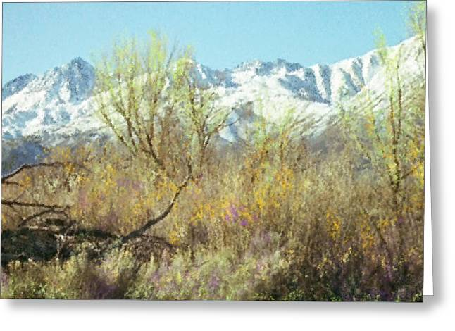 Spring In The Sierra Nevada Mountains Greeting Card