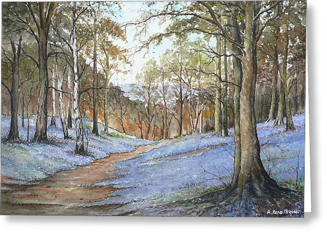 Spring In Wentwood Greeting Card by Andrew Read
