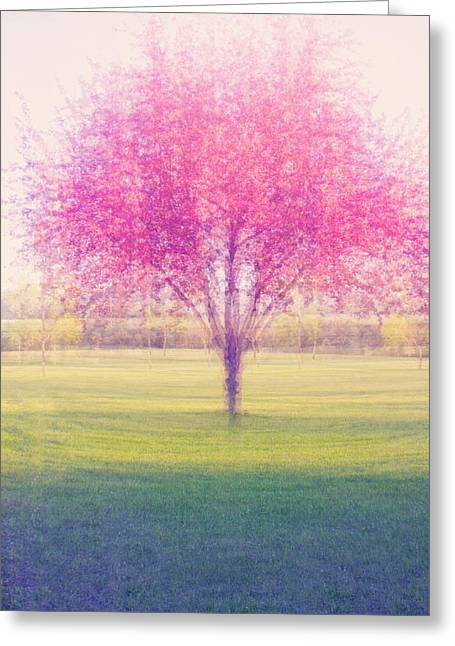 Spring Is A Blur Greeting Card
