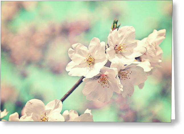 Spring Is Coming Greeting Card by Delphimages Photo Creations
