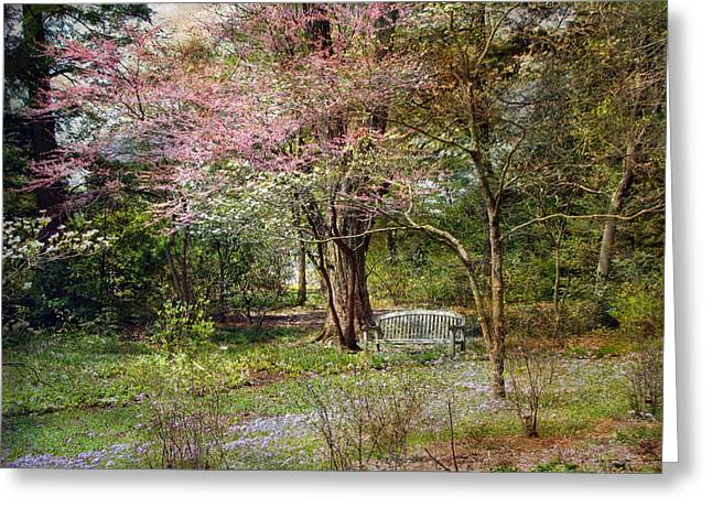 Greeting Card featuring the photograph Spring by John Rivera
