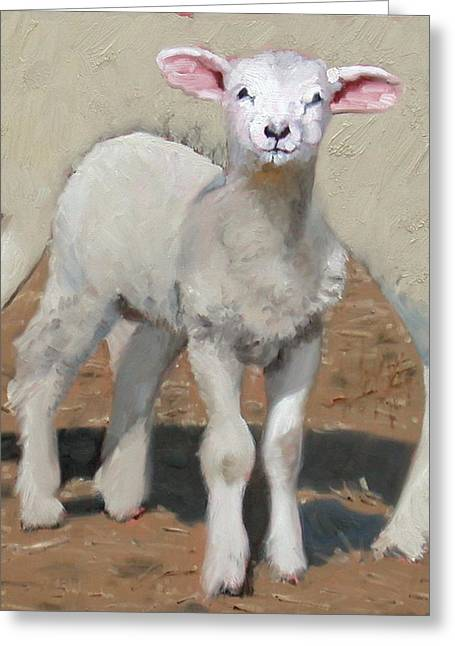 Spring Lamb Greeting Card