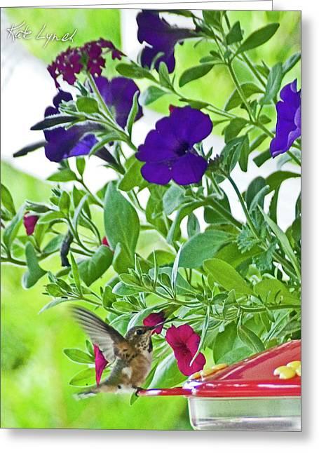 Spring Landing Greeting Card