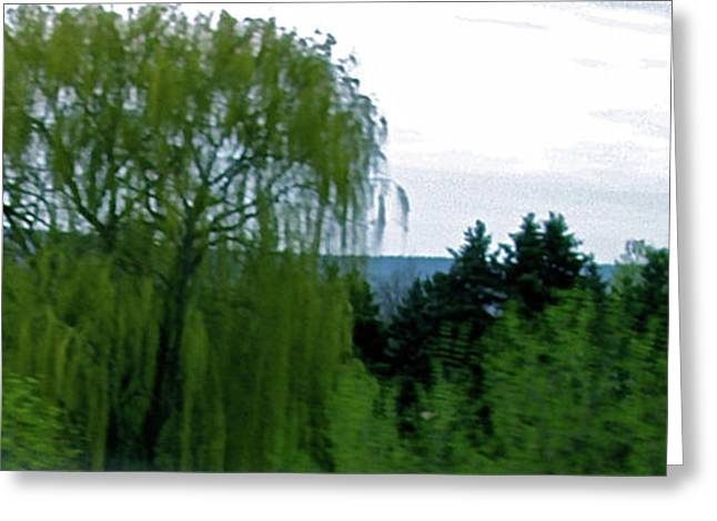Spring Landscape Willows Greeting Card by Debra     Vatalaro