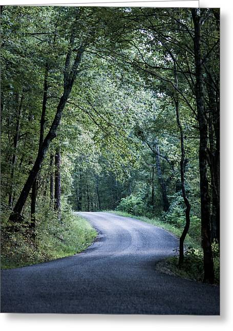 Spring Light On A Forest Road Greeting Card