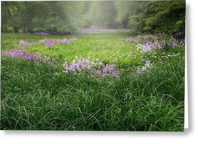 Spring Meadow 2016 Greeting Card