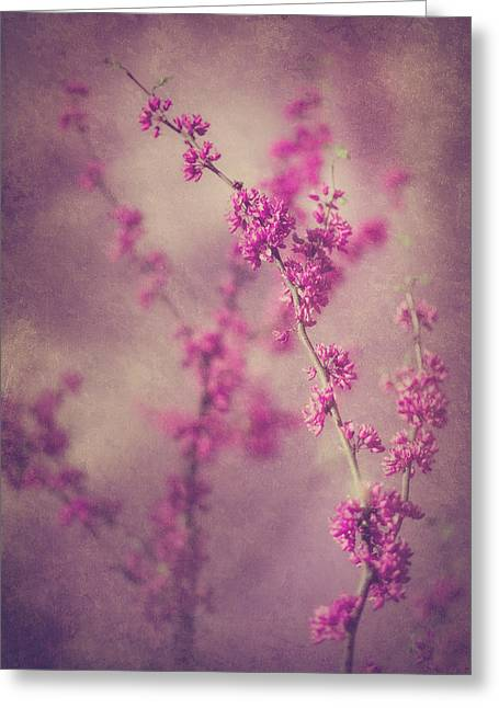 Spring Melody Greeting Card