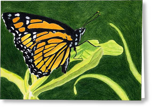 Spring Monarch Greeting Card