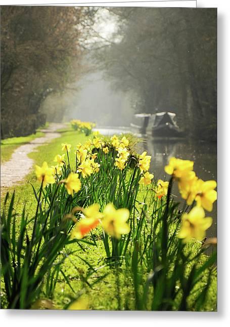 Spring Morning Greeting Card