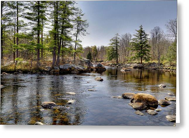 Greeting Card featuring the photograph Spring Near Moose River Road by David Patterson
