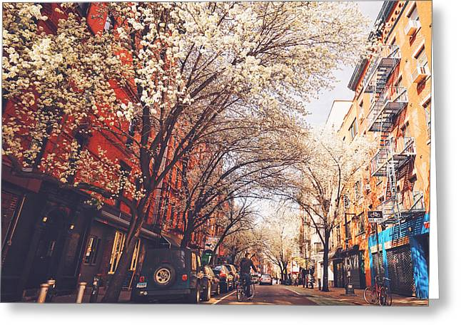 Spring - New York City - Lower East Side Greeting Card by Vivienne Gucwa