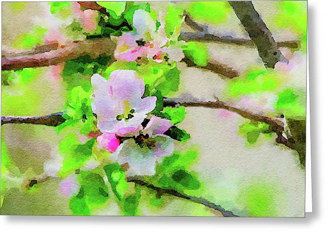 Spring On A Branch Greeting Card