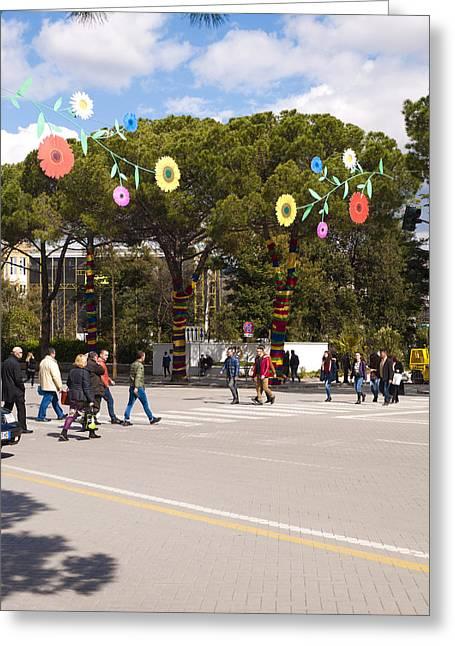 Spring On Deshmoret E Kombit Boulevard Greeting Card by Rae Tucker