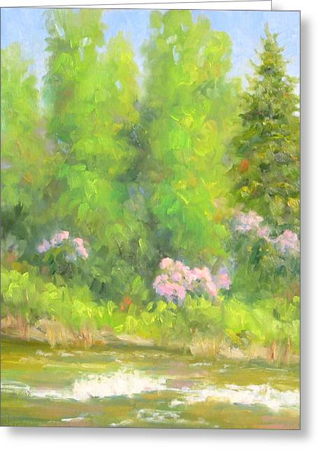 Spring On Gore Creek Greeting Card by Bunny Oliver