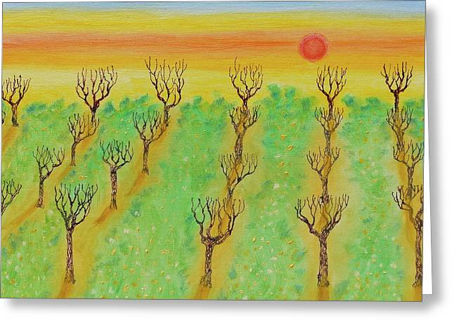 Spring Orchard Sunset Greeting Card