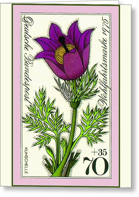 Spring Pasque Flower Greeting Card by Lanjee Chee