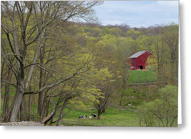 Spring Pasture New England Square Greeting Card