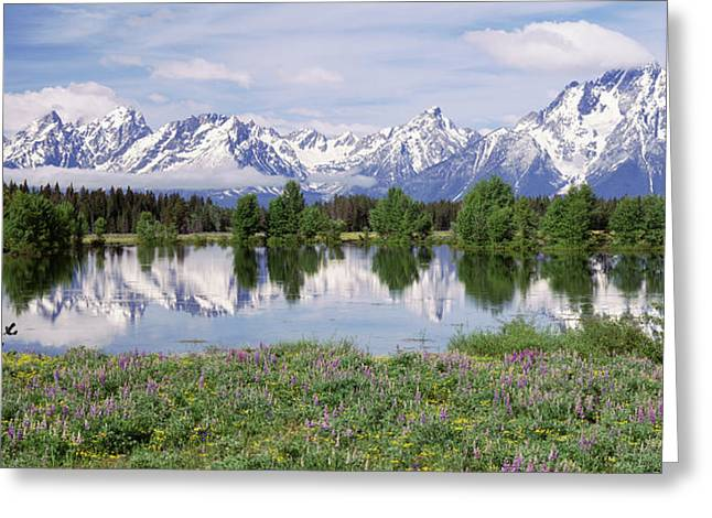 Spring Pond Grand Teton National Park Greeting Card
