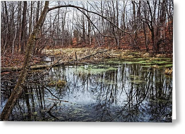 Spring Pond Greeting Card by Phill Doherty