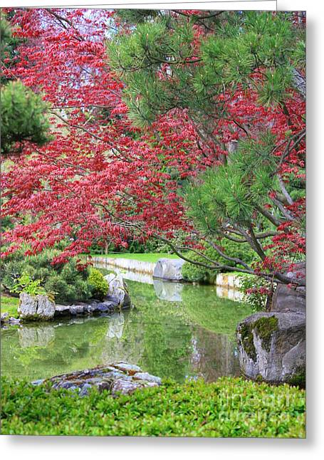 Spring Pond Reflection Greeting Card