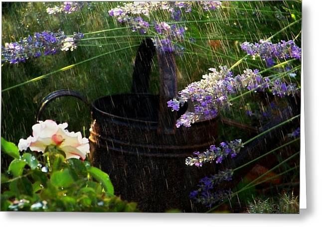 Spring Rain Greeting Card by Marika Evanson
