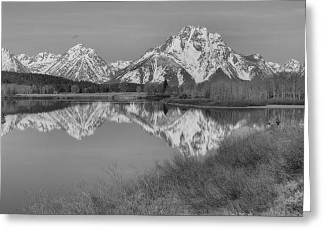 Spring Reflections At Oxbow Bend Black And White Greeting Card by Adam Jewell