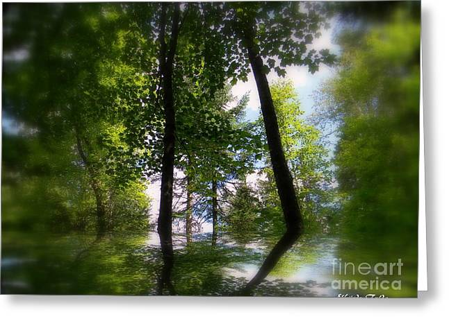 Spring Reflections Greeting Card