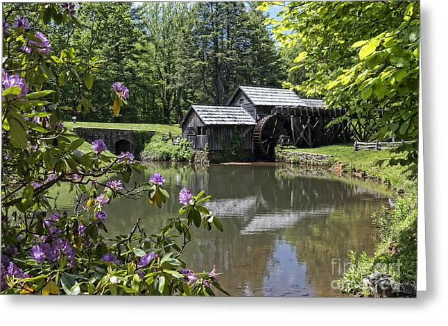 Spring Reflections Of An Ancient Mill Greeting Card