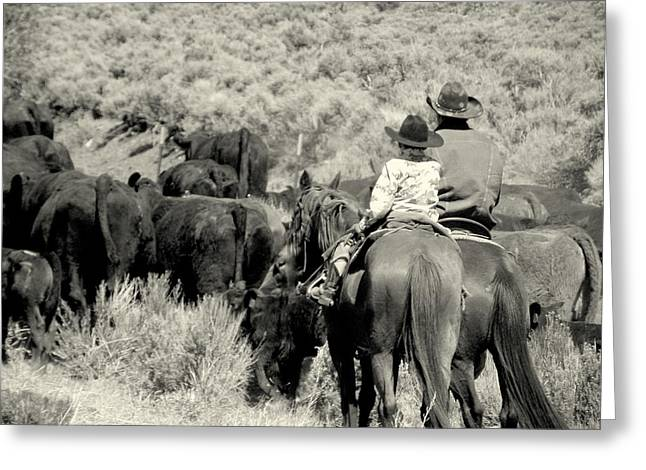 Greeting Card featuring the photograph Spring Roundup Series 3 by Antonia Citrino