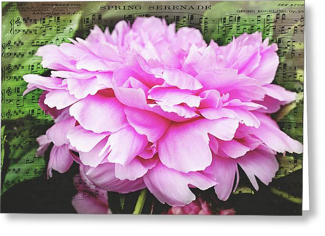 Greeting Card featuring the photograph Spring Serenade  by Trina Ansel