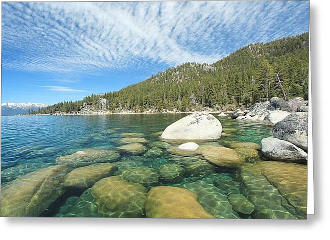 Greeting Card featuring the photograph Spring Shores  by Sean Sarsfield