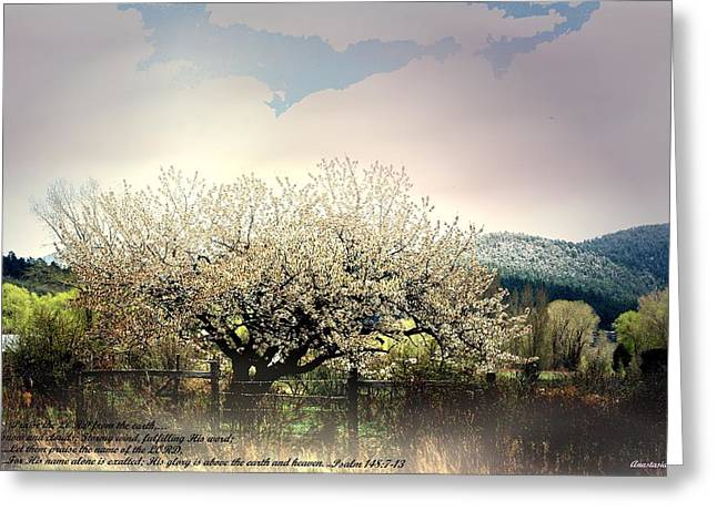 Greeting Card featuring the photograph Spring Snow Inspiration by Anastasia Savage Ealy