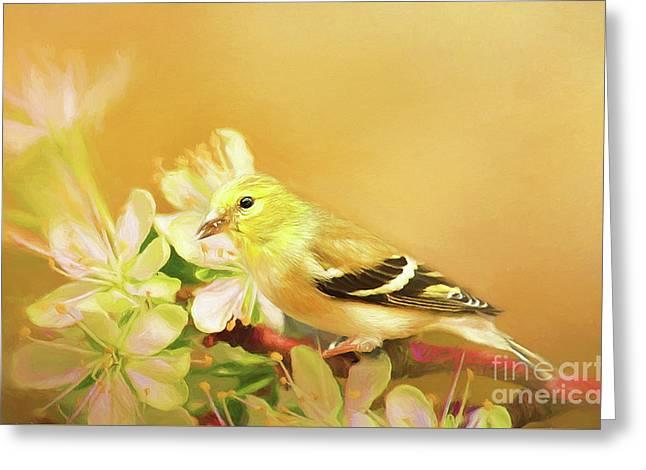 Spring Song Bird Greeting Card