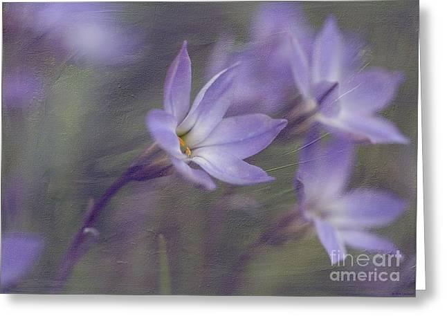 Spring Starflower Greeting Card