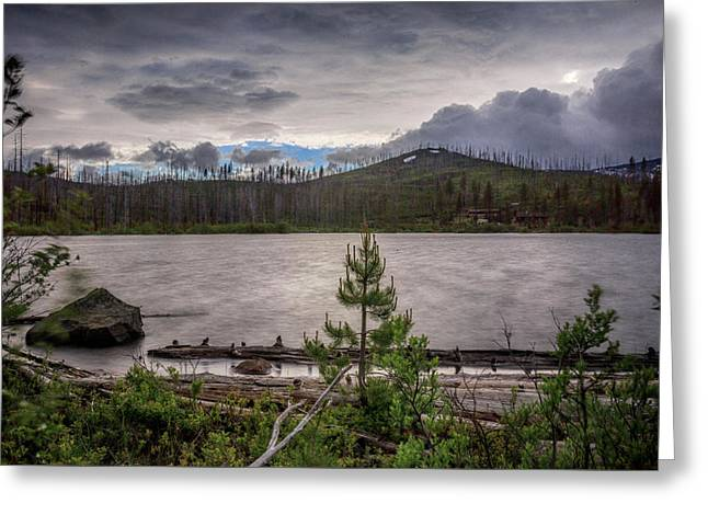 Greeting Card featuring the photograph Spring Storm At Round Lake by Cat Connor