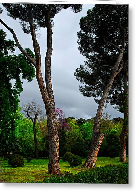 Spring Storm Over Park Retiro Greeting Card by Georgia Nick