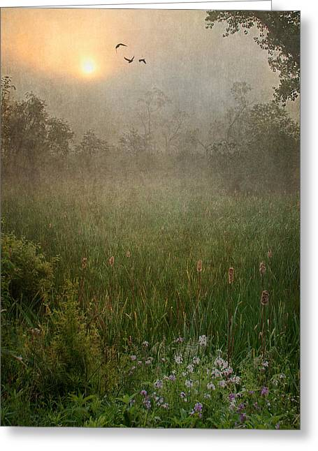 Spring Sunrise In The Valley Greeting Card