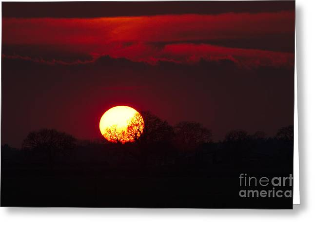 Greeting Card featuring the photograph Spring Sunset by Jeremy Hayden