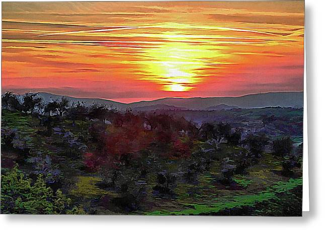 Spring Sunset Over Olive Groves Greeting Card