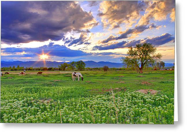 Spring Sunset Over The Rockies Greeting Card