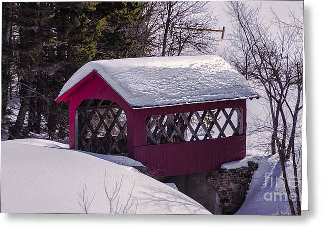 Spring Time At Vergennes Falls. Greeting Card