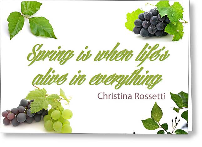 Spring Time Quotes Greeting Card by Celestial Images