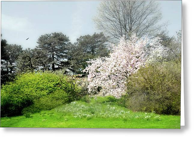 Greeting Card featuring the photograph Spring Treasures by Diana Angstadt