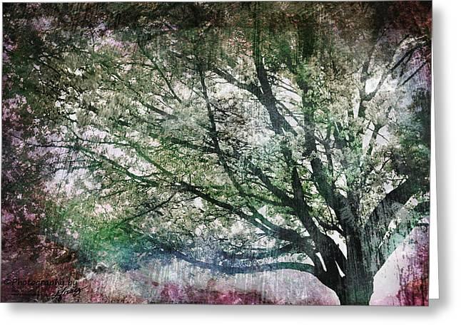 Spring Tree Greeting Card by Gray  Artus