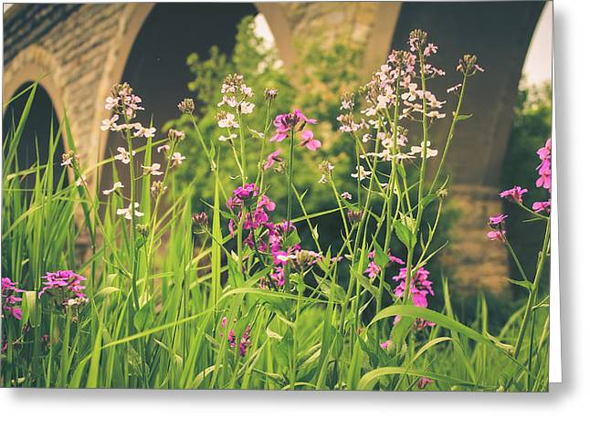 Spring Under The Arches Greeting Card