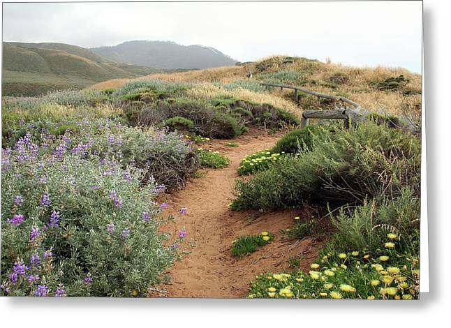 Greeting Card featuring the photograph Spring Wild Flowers by Michael Rock